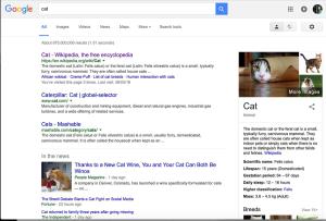 Google-Search-Cat